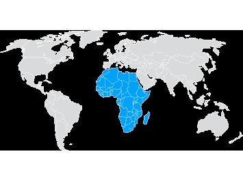 Envíos de paquetería internacional a África
