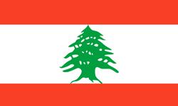 Enviar paquete a Líbano